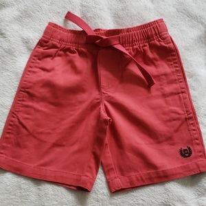 Size - 6 Chaps Little Boys Dinosaur Shorts